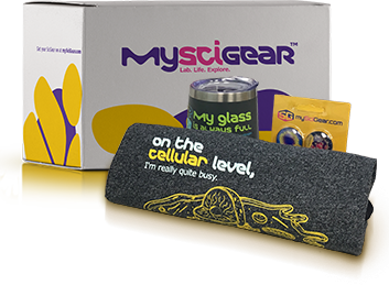 Example Subscription Box